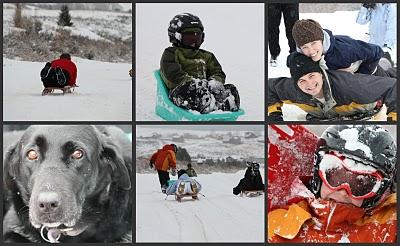 rp_sled.jpg